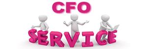 CFO-CONTROLLER SOLUTIONS